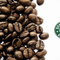 Coleção: Um amor chamado Starbucks
