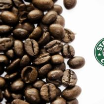 Um amor chamado Starbucks